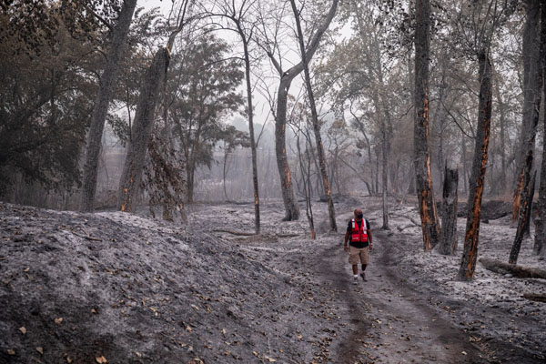Eric Carmichael of the American Red Cross looks out on what was an unspoiled wooded area that burned in the fires near Central Point, OR on Sunday, September 13, 2020.